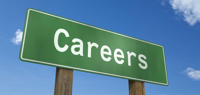 On the Car Salesman Career Path