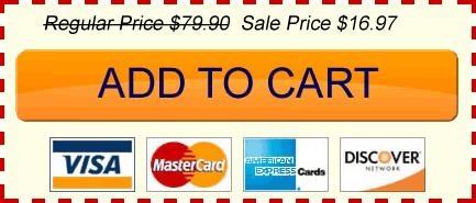 car sales ebook