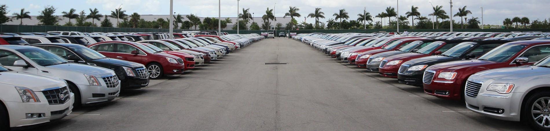 Car Sales Professional