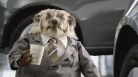 Badger Car Salesman